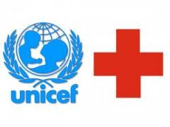 В Луганск прибыла гуманитарная помощь ЮНИСЕФ и Красного Креста