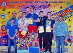 Дев'ять медалей привезли борці Луганської області з Чемпіонату України