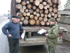 На Луганщині поліцейські продовжують перевірки транспорту, яким перевозиться деревина і лісоматеріали