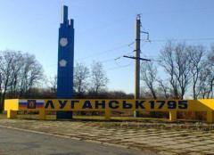 """""""Мы ехали шестой час из Луганска в Северодонецк"""""""